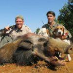 Umdende Hunting Safaris Bushpig