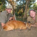 Umdende Hunting Safaris Red Duiker
