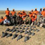 Umdende Hunting Safaris Guineafowl