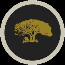 umdende-tree-222x222-0001
