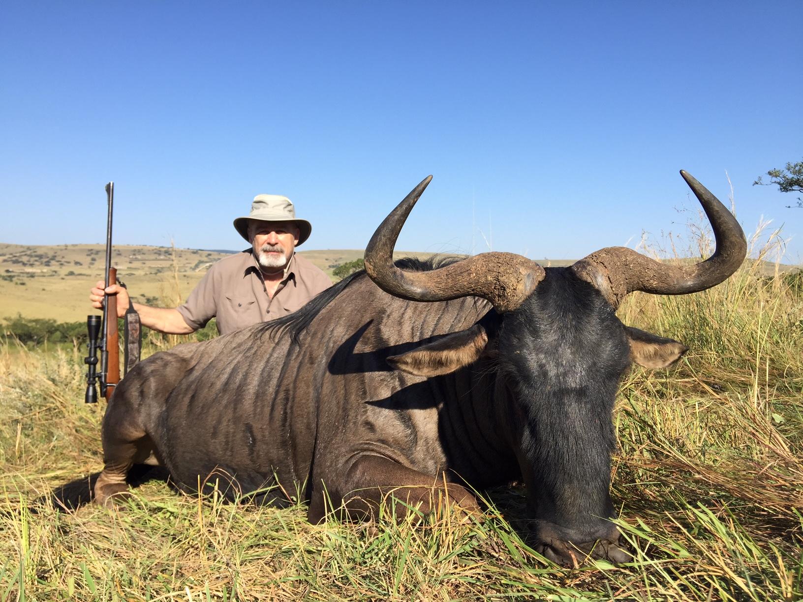 Umdende Hunting Safaris Blue Wildebeest