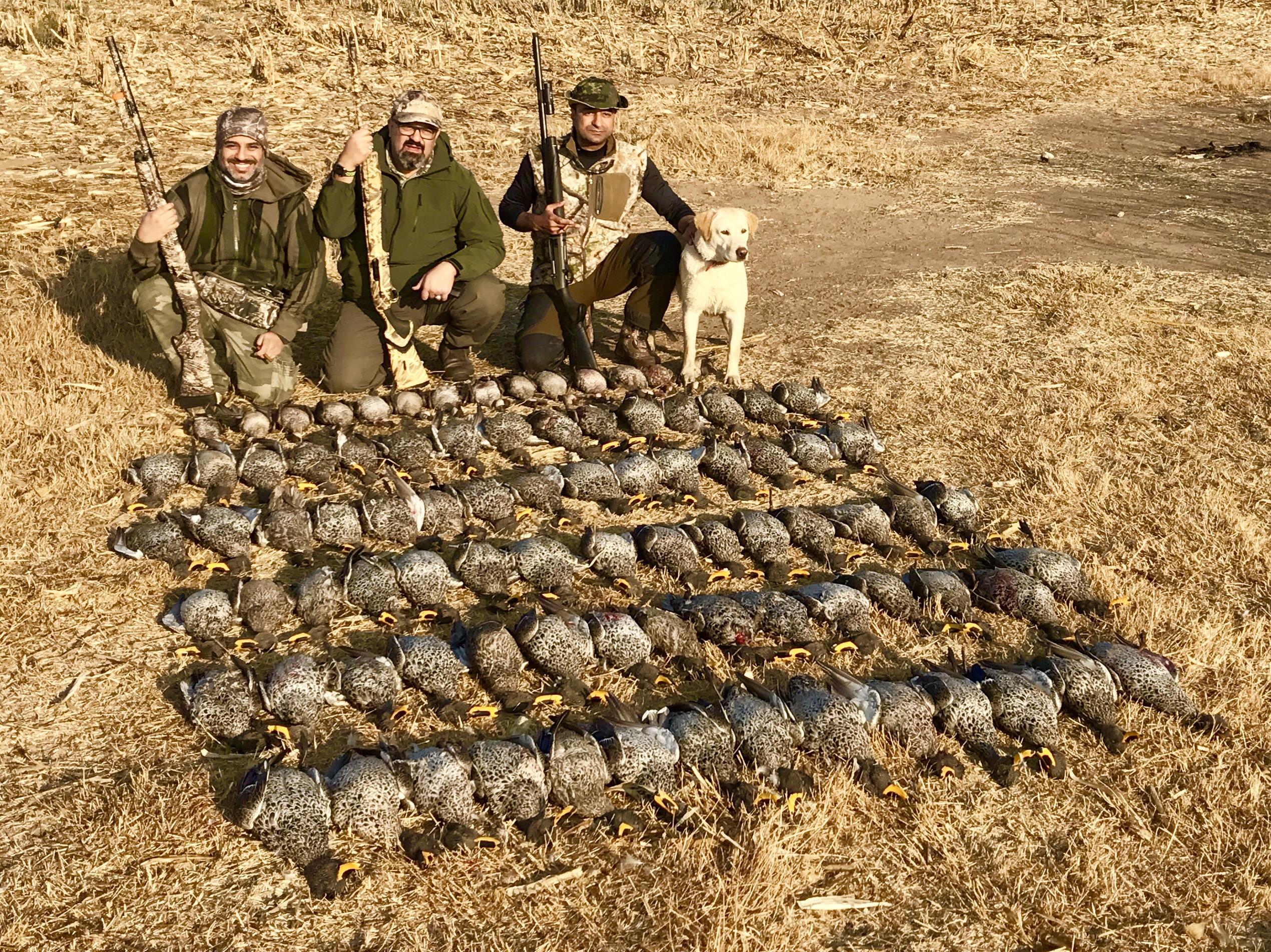 Umdende Hunting Safaris Ducks