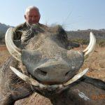 Umdende Hunting Safaris Warthog